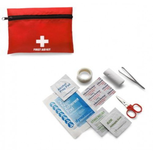 Mini First Aid Kit