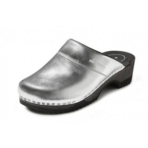 Bighorn Rhone Silver